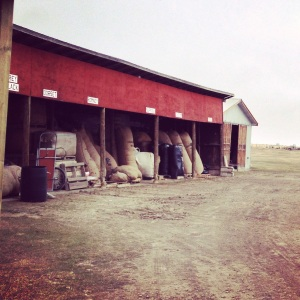 Storage barn for unprocessed wool